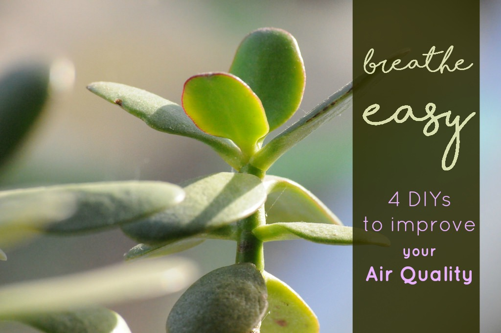Improve Air Quality